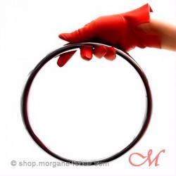 Anneau de Suspension Shibari  Acier Inox 20cm