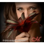 """Plumes Scarlet """"Grey's Collection"""""""