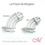 Cage de Chasteté La Prison de Morgane MINI Acier Chirurgical