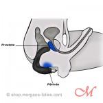 Rude Boy - Double Stimulateur de Prostate Vibrant Silicone